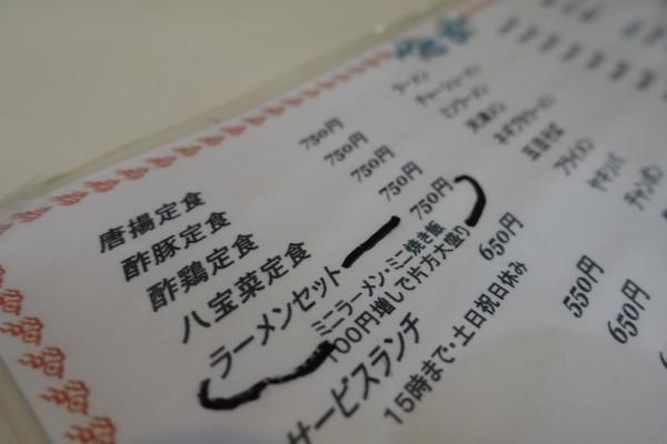 DSC04683