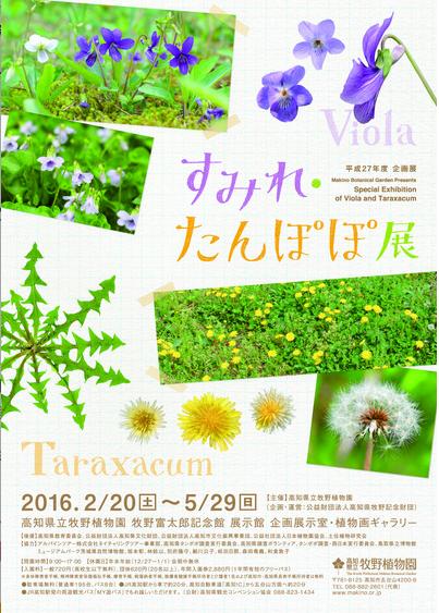 スクリーンショット 2016-05-18 18.52.20
