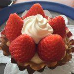 【中土佐町久礼】いちご農家の主婦が運営するケーキショップ「風工房」が素敵すぎる!