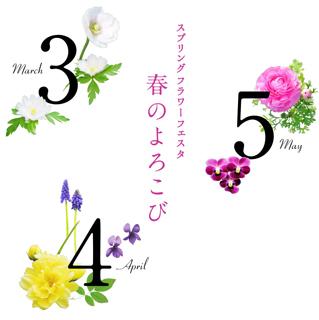 title (3)